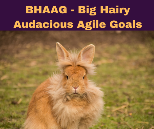 BHAAG - Big Hairy Audacious Agile Goals